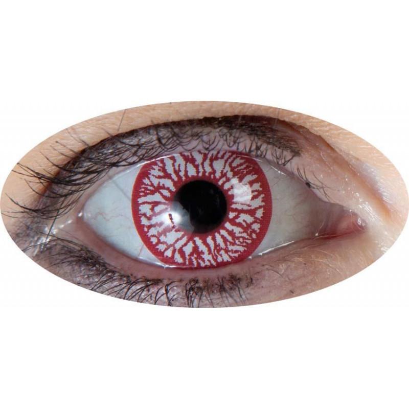 lentilles oeil sanglant journalière