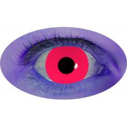 lentilles uv rouge annuel