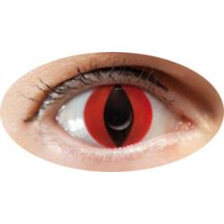 lentilles oeil chat rouge annuel