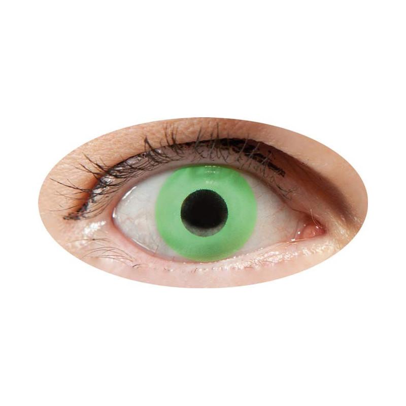 lentilles vert