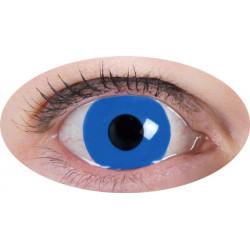 lentilles bleu