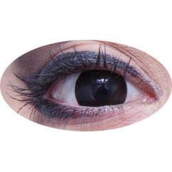 lentilles oeil noir journalière