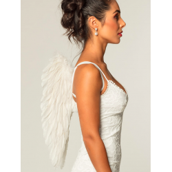 ailes plumes blanche