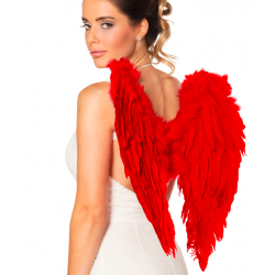 ailes plumes rouge