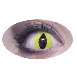 lentilles oeil jaune journalière