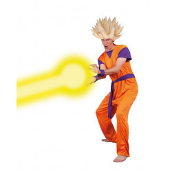 Costume Dragon Ball