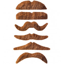 moustache assortis