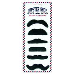 6 moustaches assortis