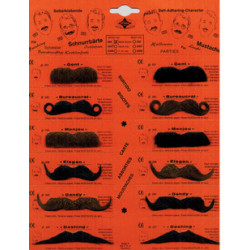 Lot de 12 moustaches assorties